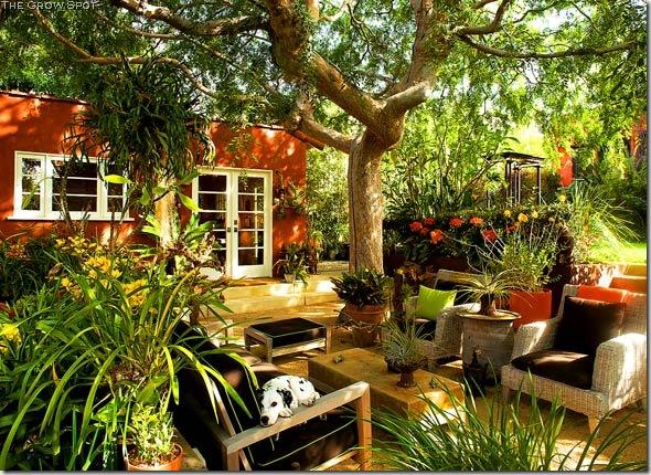 O grădină face și casa mai frumoasă